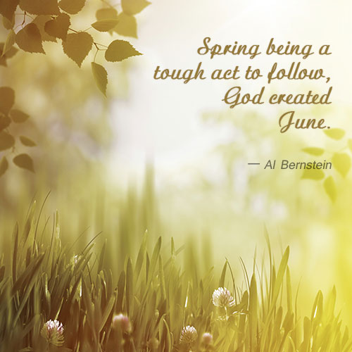 Image result for june quotes
