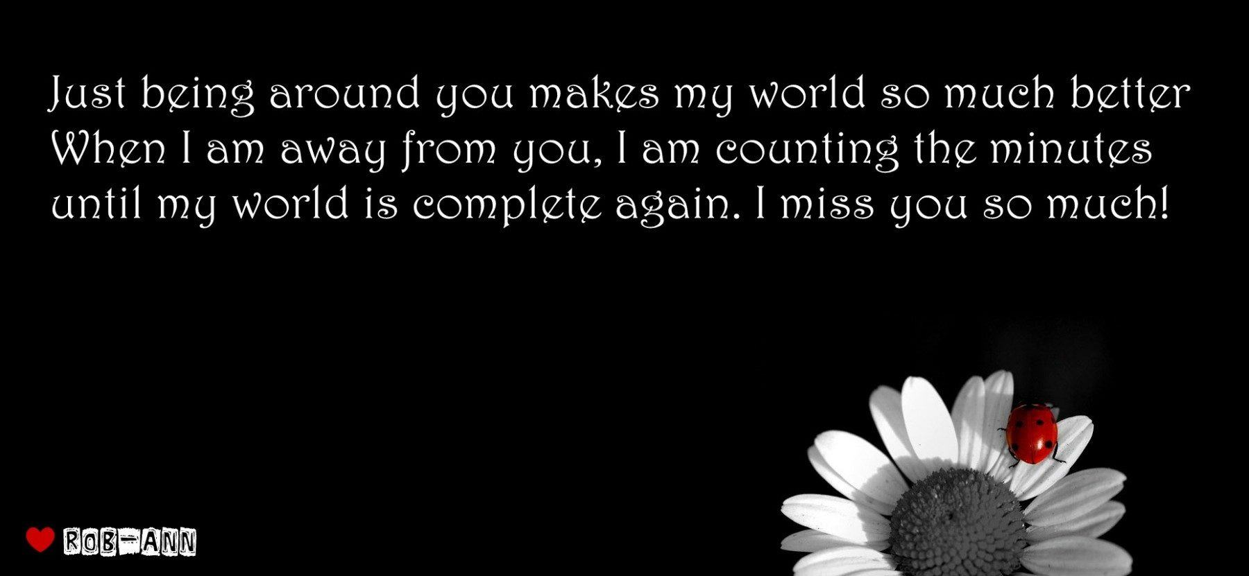 Quotes about Miss You So Much (32 quotes)