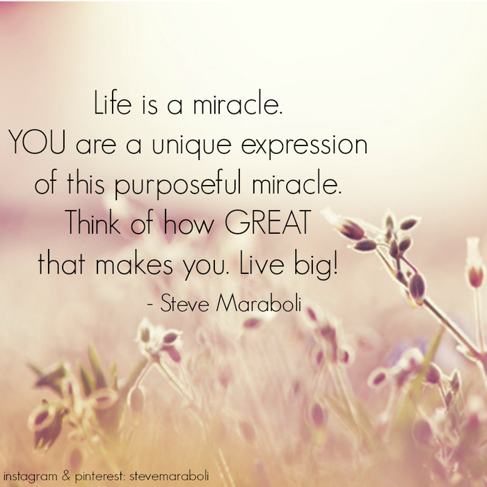 miracles of life essay Read this essay on reaction: the greatest miracle in the world come browse our large digital warehouse of free sample essays get the knowledge you need in order to pass your classes and more.