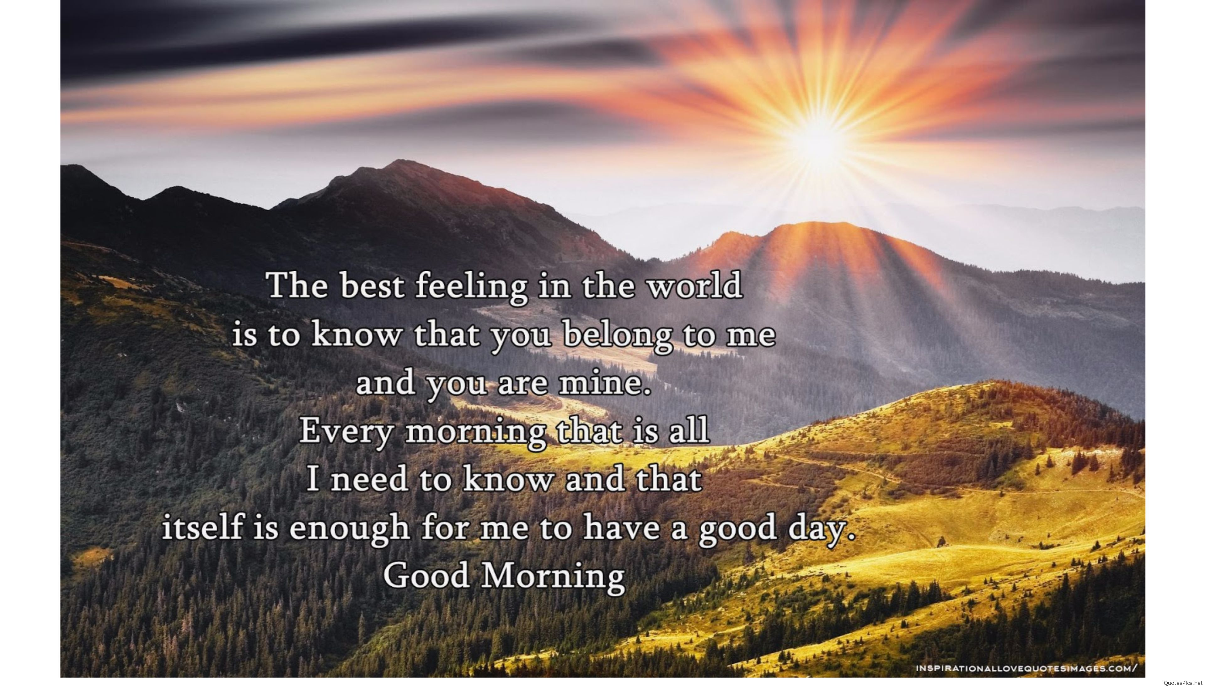Quotes about Morning sun (108 quotes)
