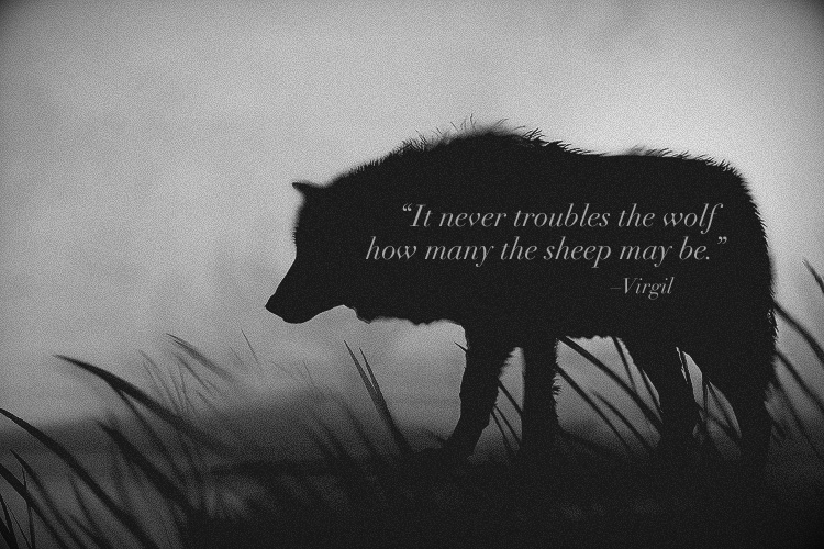 Quotes about Wolves (236 quotes)