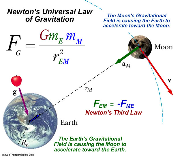 universal gravitation Concepts related to newton's law of universal gravitation sir isaac newton was the first scientist to precisely define the gravitational force, and to show that it could explain both falling bodies and astronomical motions.