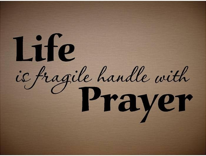 Quotes About Life Is Fragile 62 Quotes
