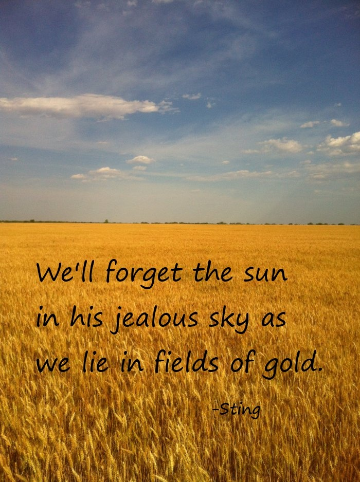 quotes about golden fields quotes