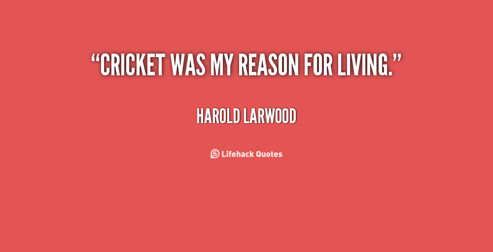 Quotes About Cricket 322 Quotes