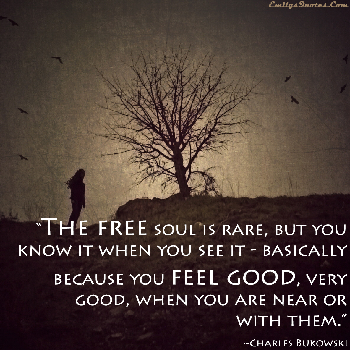 Quotes About Soul Freedom 91 Quotes