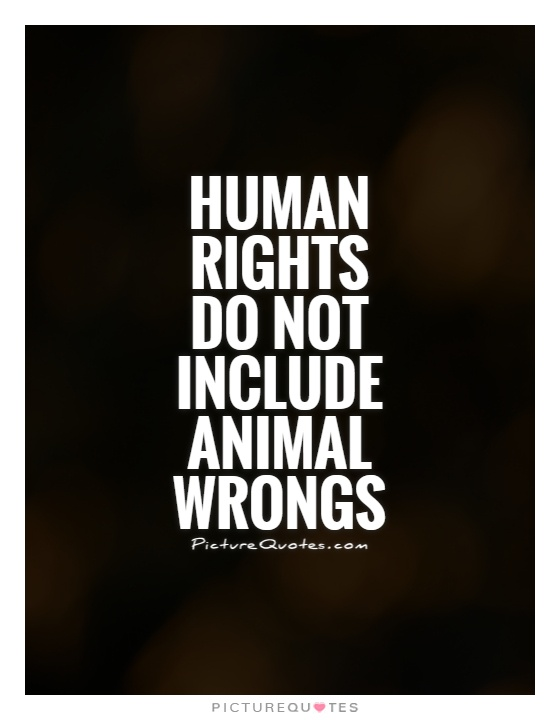Animal Rights Quotes Classy Quotes About Animal Rights 48 Quotes