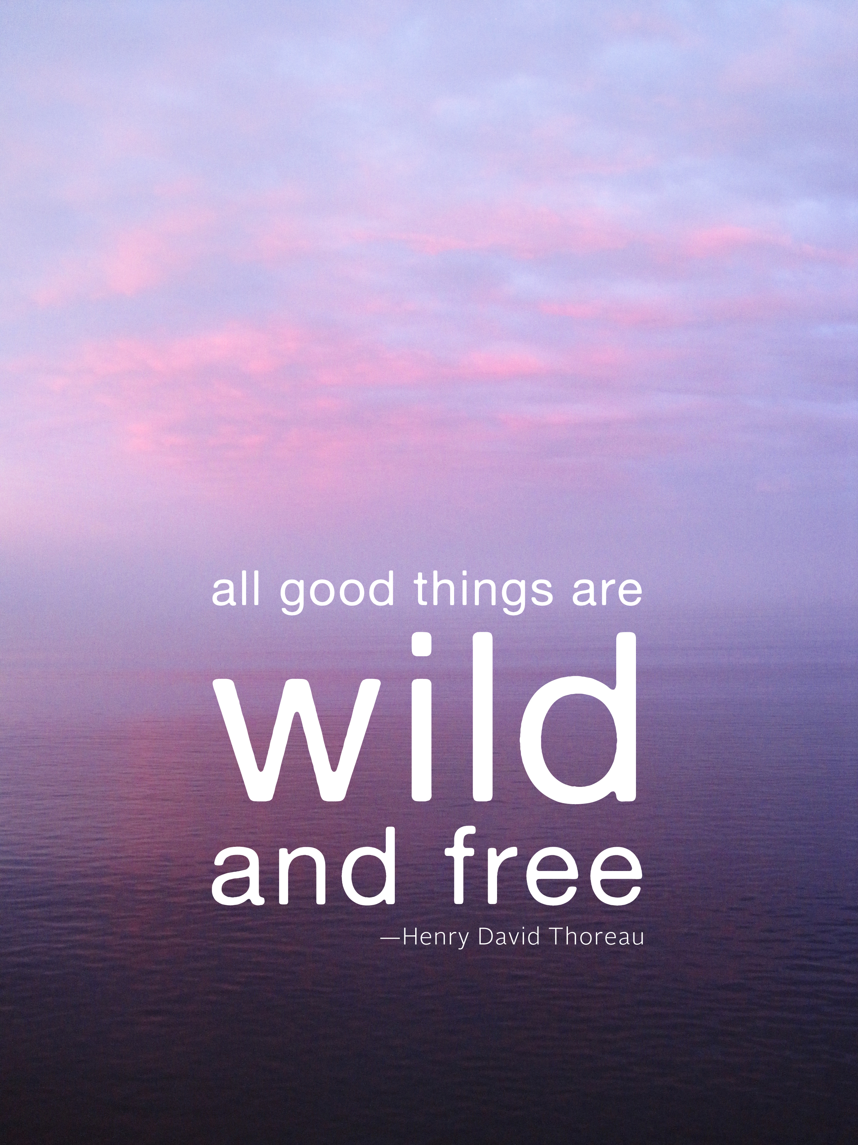 Quotes About Being Wild Quotes about Being free and wild (15 quotes) Quotes About Being Wild