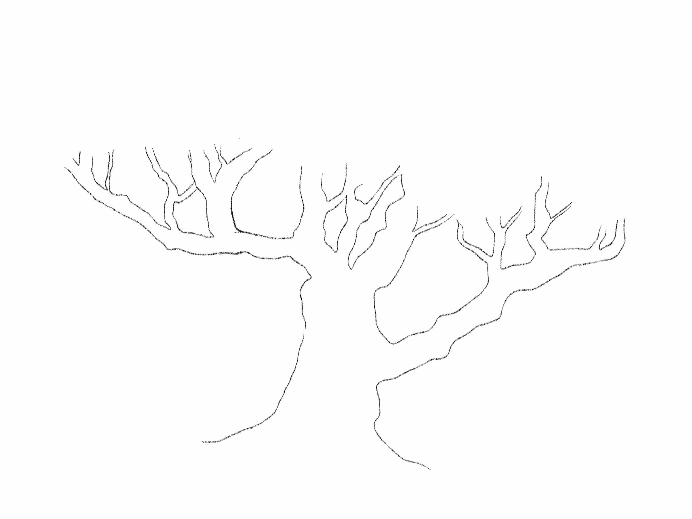 tree trunk templates virtren com