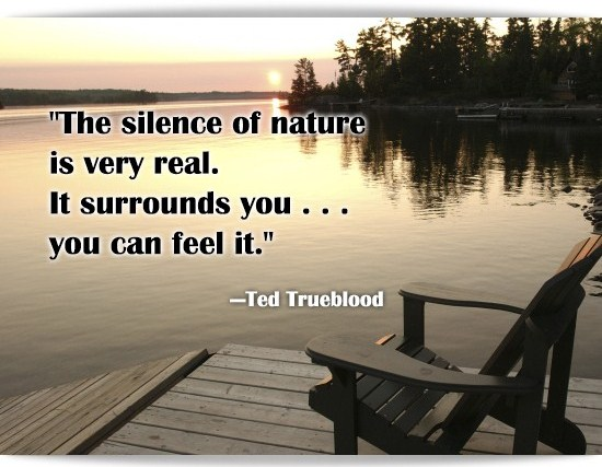 quotes about silent nature quotes