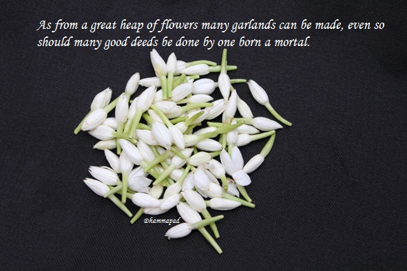 quotes about garlands quotes