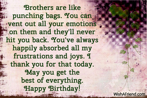 Quotes About Thanking Brother 22 Quotes