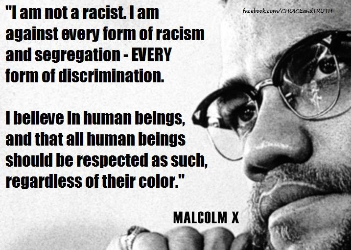 an overview of the malcolm x biography and the influence on the american society