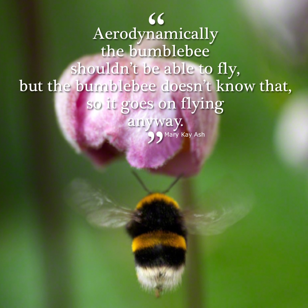 Image result for being able to fly