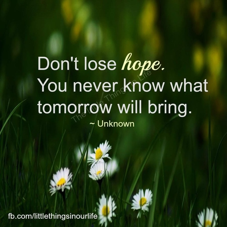 Quotes About Never Lose Hope 61 Quotes