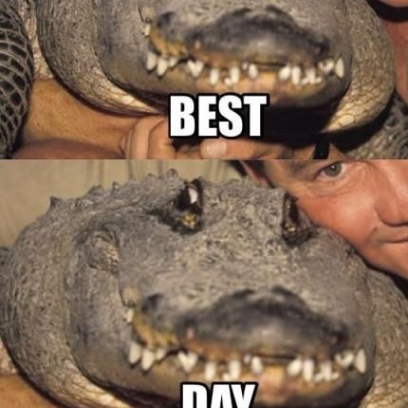 Quotes About Crocodile 96 Quotes