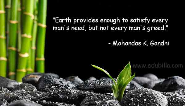 Quotes about Environmental education (32 quotes)