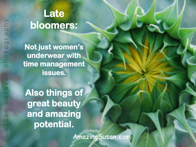 Quotes About Late Blooming 26 Quotes
