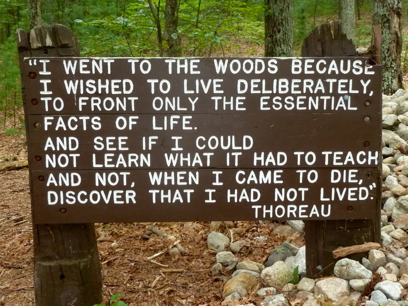 quotes about nature from walden quotes