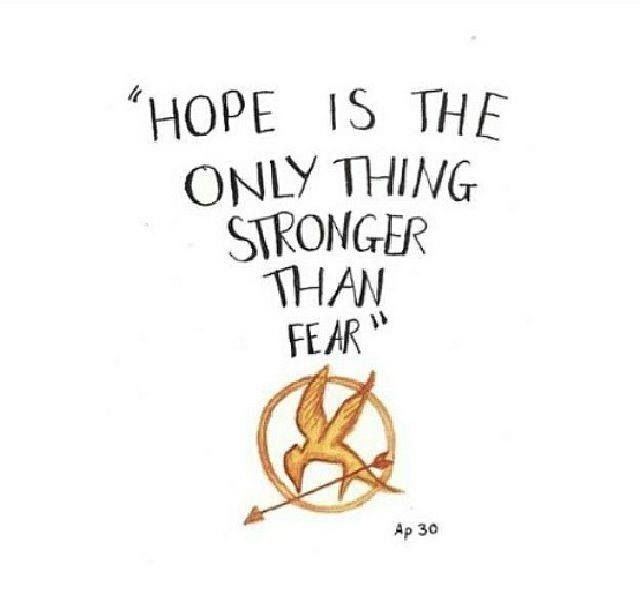 Quotes About Hunger Games Book 29 Quotes