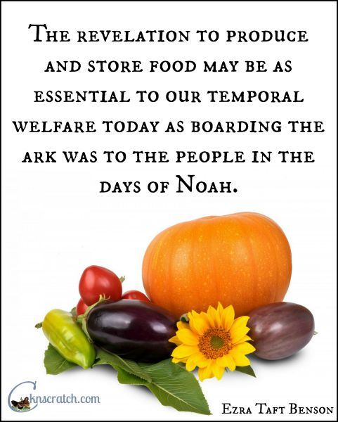 Quotes about Food preservation (25 quotes)