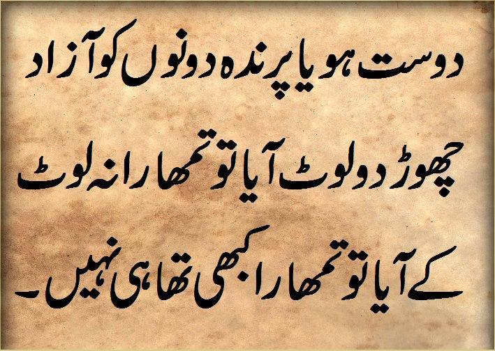 women rights in urdu language