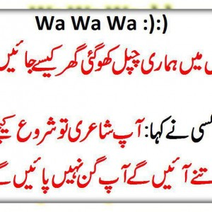 Quotes About Language In Urdu 27 Quotes