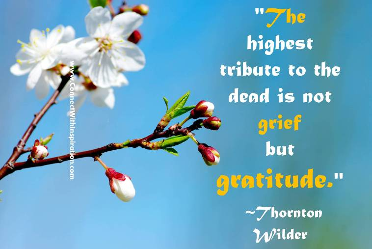 Quotes about Dead Flowers (70 quotes)