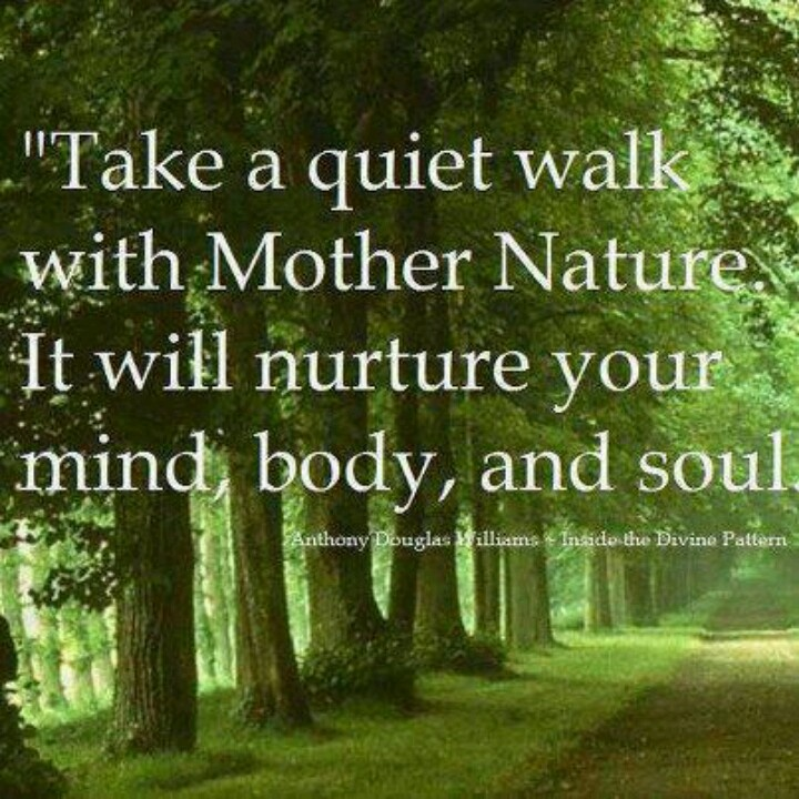 Back To Nature Quotes: Quotes About Going Back To Nature (28 Quotes