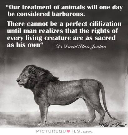 Animal Rights Quotes Gorgeous Quotes About Animal Rights 48 Quotes