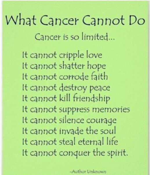 eb16f0f233525a02c51a28bc19ec9e8a quotes about kicking cancer (24 quotes)