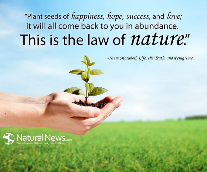 quotes about nature and happiness quotes