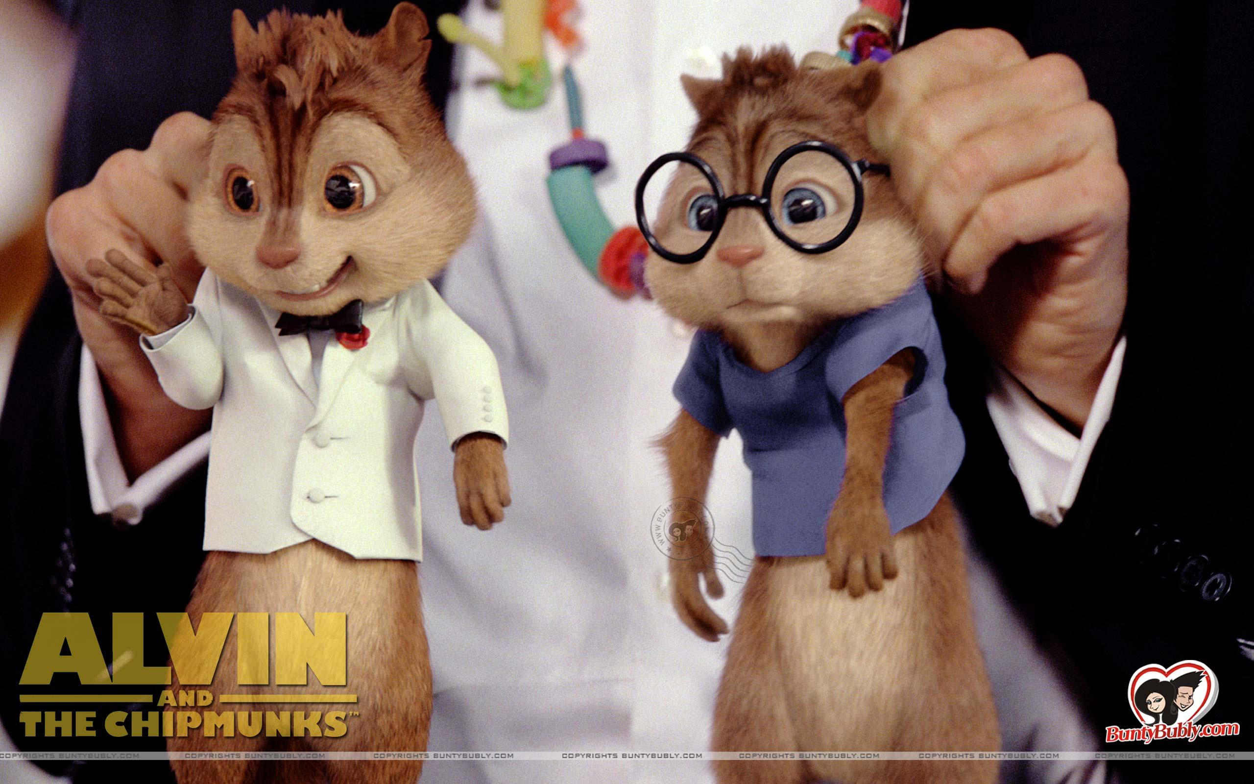 Quotes About Chipmunks 42 Quotes
