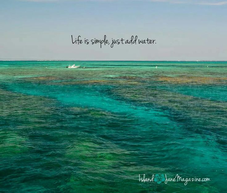 Quotes about Island (526 quotes)