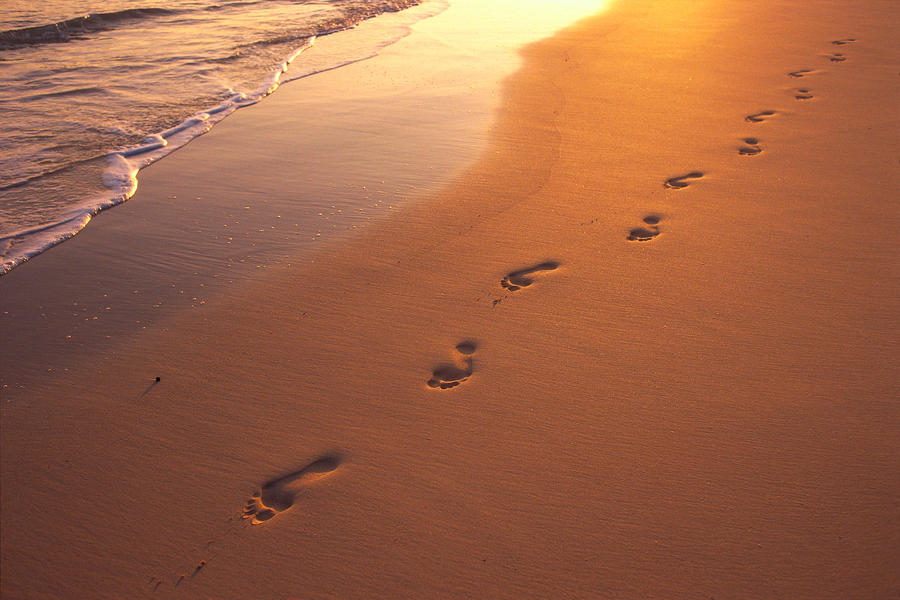 Quotes About Footprints 180 Quotes