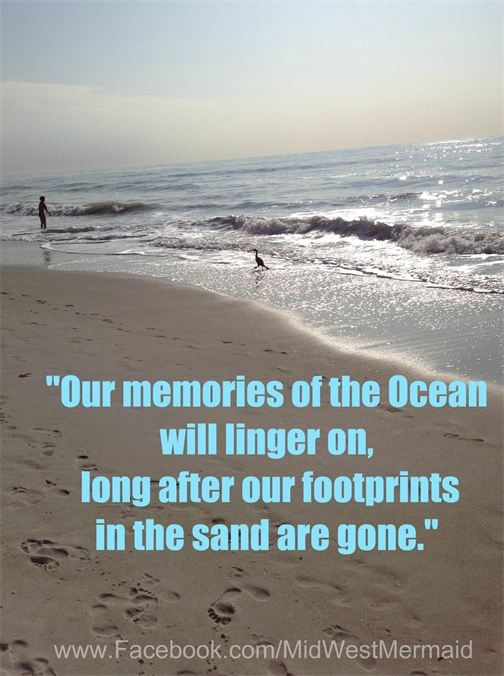 Quotes About Beach And Family 82