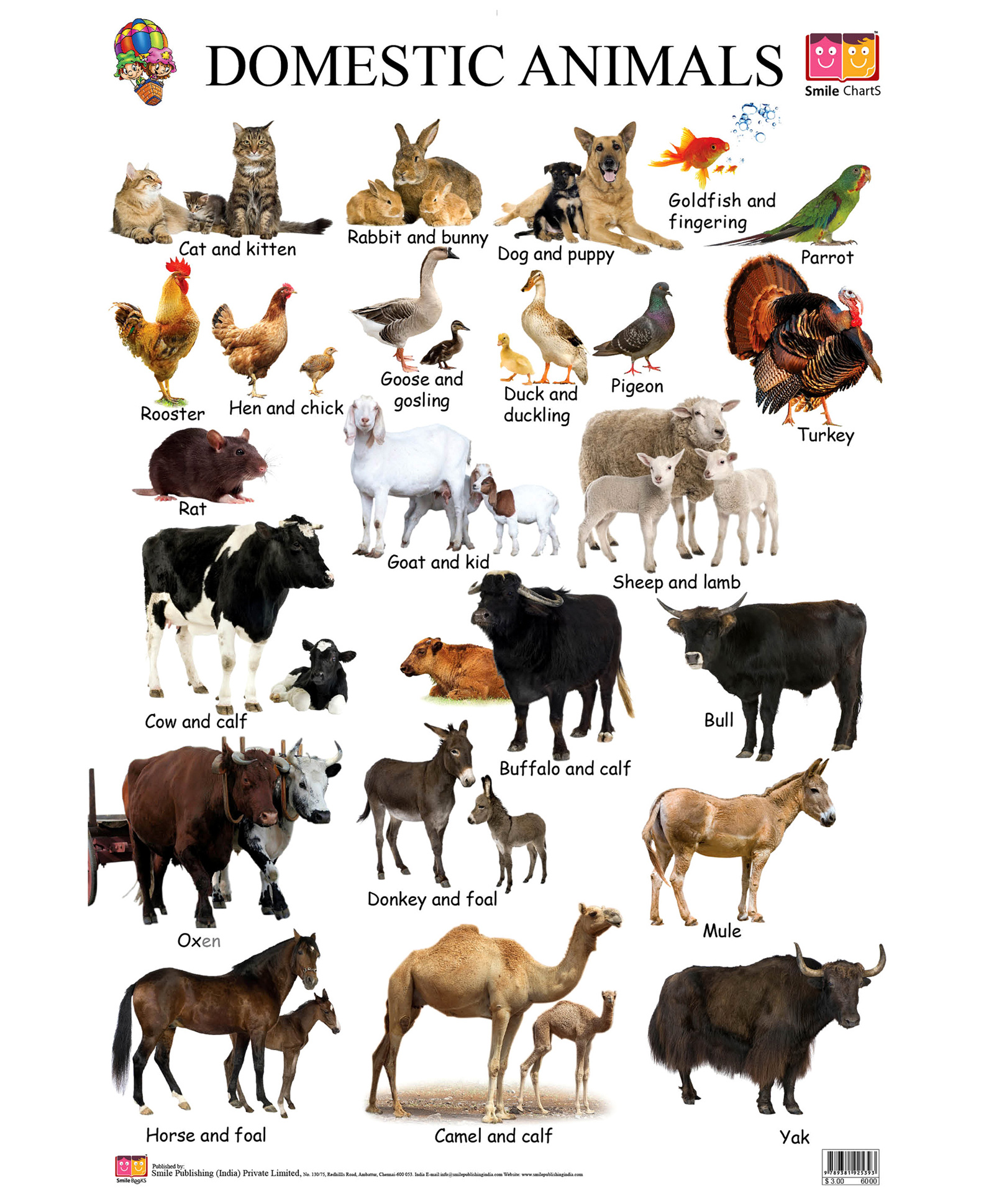 Quotes About Animal Domestication 23 Quotes