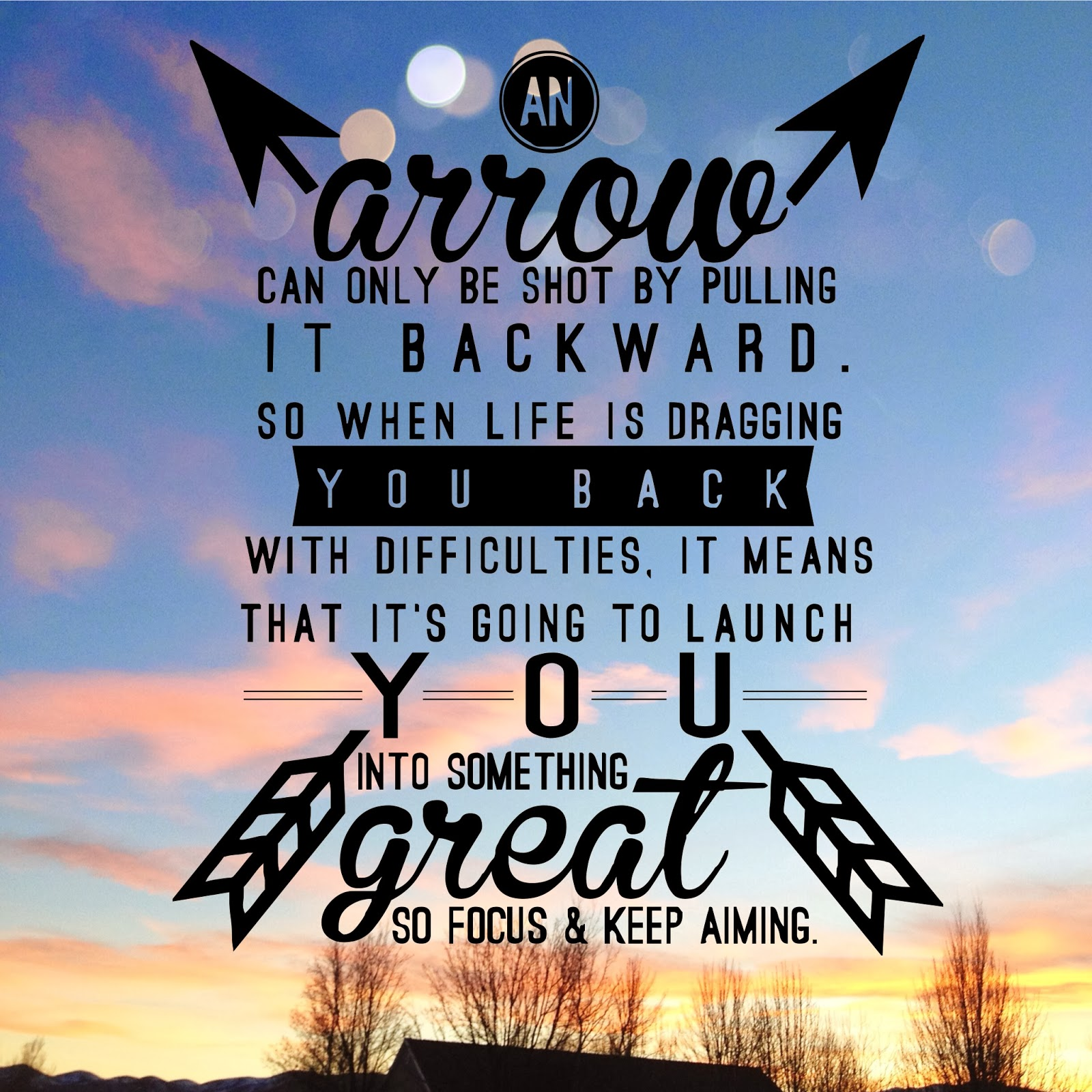Quotes About Shooting Arrows 27 Quotes