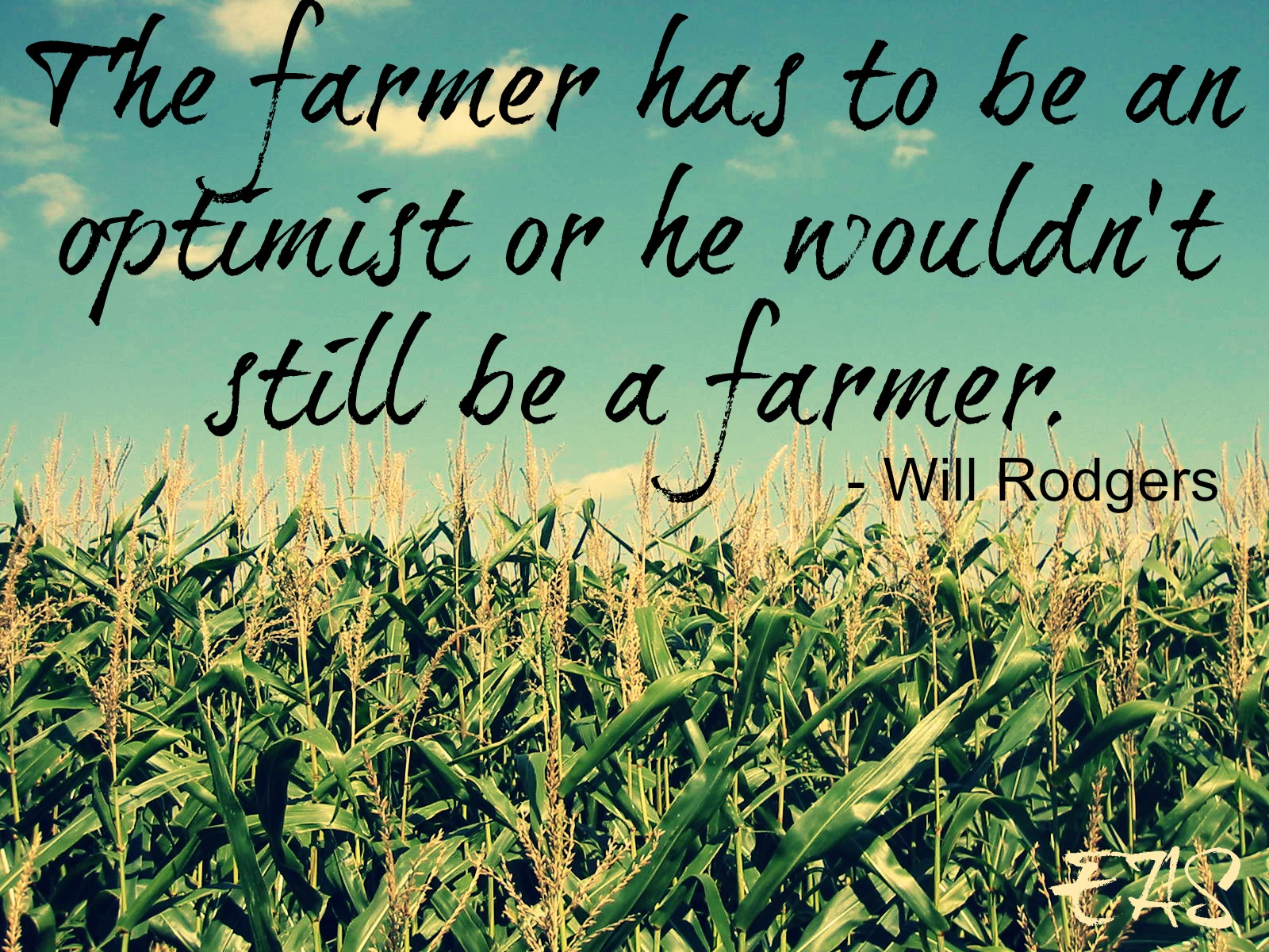 Quotes about Farm (429 quotes)