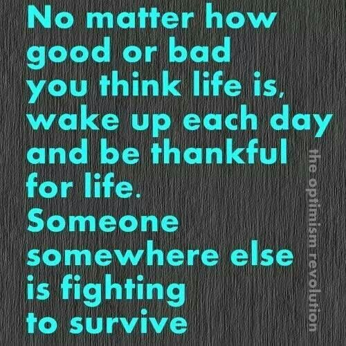 Quotes About Cancer Survival 67 Quotes