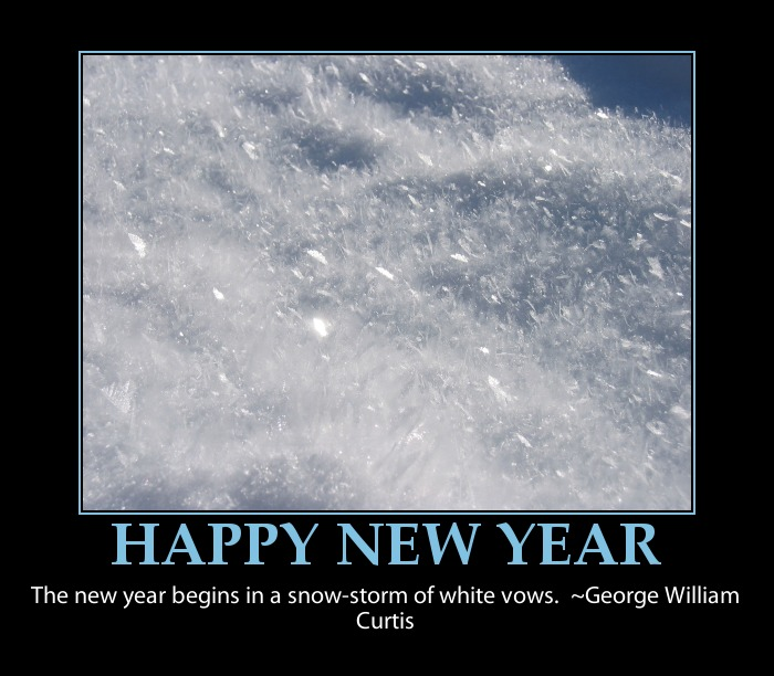 Quotes about New years funny (23 quotes)