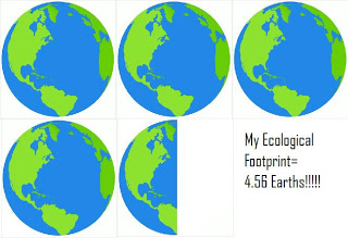 assignment 1 environmental footprint Sci 207 week 1 assignment environmental footprint,sci 207 week 1 assignment environmental footprint,sci 207 week 1 a++ graded with descriptions.