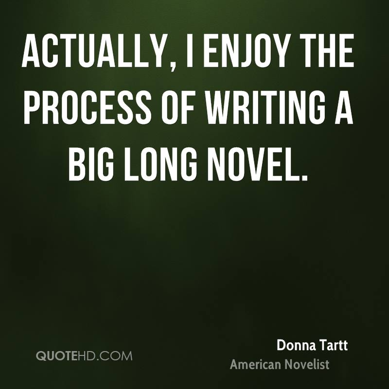 process of writing a novel