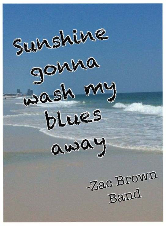 Quotes about Country Music (391 quotes)
