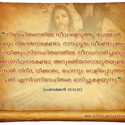 Quotes about Reading bible (103 quotes)