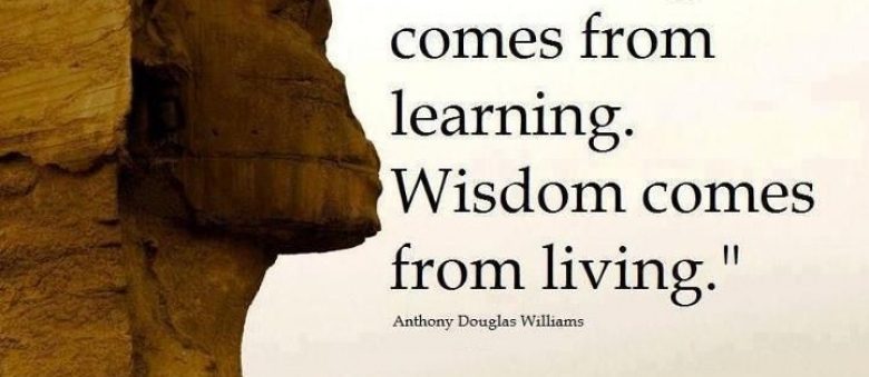 quotes about great learning experience quotes
