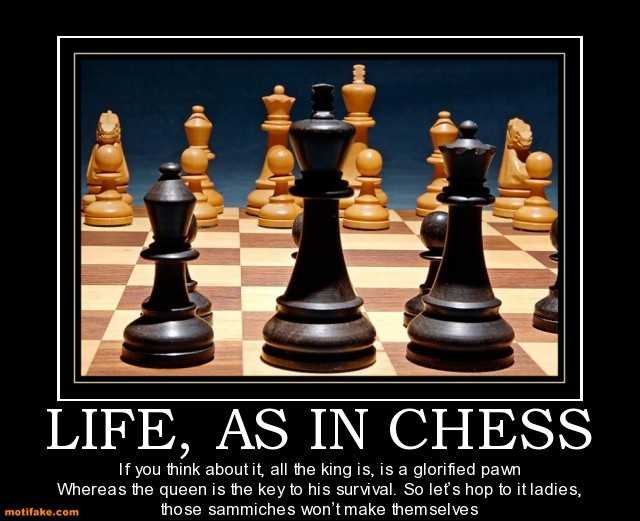 Quotes about Chess (602 quotes)