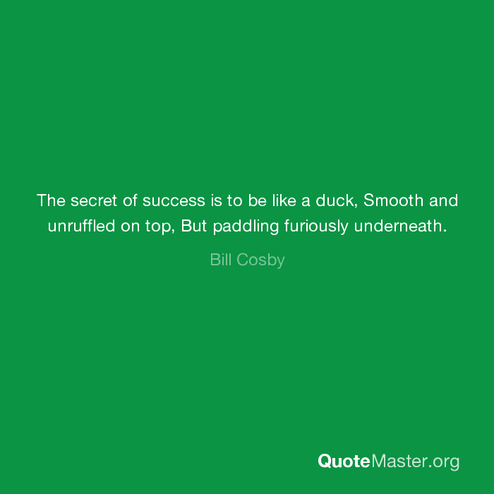 The Secret Of Success Is To Be Like A Duck Smooth And Unruffled On