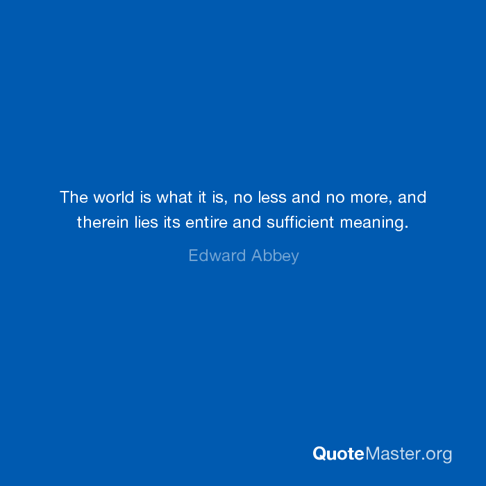 Sufficient Meaning