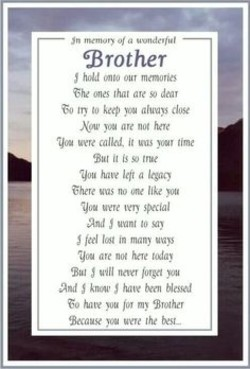Quotes about Brother in heaven (48 quotes)